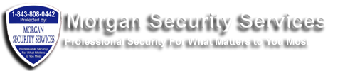 Morgan Security Services